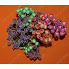 Сахарные ягоды, выбор цвета 10шт.