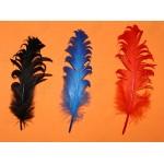 Перья цветные, 15-20 см, 25шт