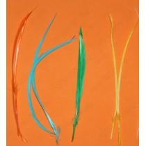 Перья цветные, 14-20 см, цвета микс, 50 шт