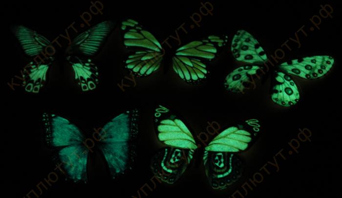 бабочки магниты