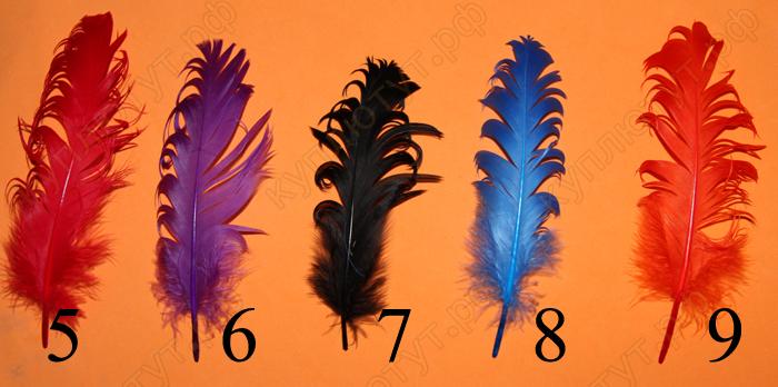 Перья цветные, 15-20 см, 1шт